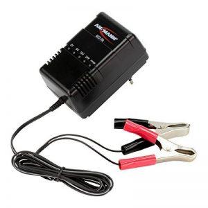 Chargeur automatique ANSMANN pour batteries au plomb ALCS 2-24A de 2V, 6V, 12V & 24V/vendu avec pinces crocodile de la marque Ansmann image 0 produit
